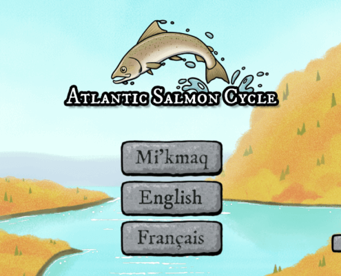 Atlantic Salmon Cycle